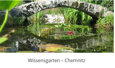 Sachsen Wissensgarten 2019 - GfWM
