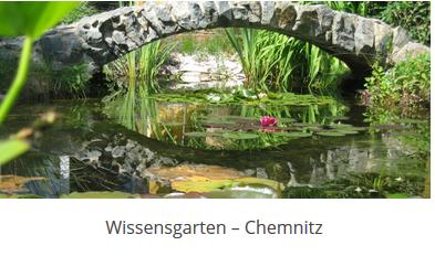 Sachsen Wissensgarten 2019 - GfWM