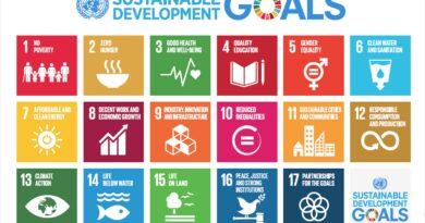 Sustainable Development Goals und Wissensmanagement